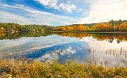 Paisagem nebulosa do outono em Noruega Imagem de Stock