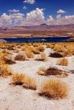 Paisagem Nevada do deserto do Mohave do lago imagens de stock royalty free
