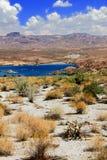 Paisagem Nevada do Mohave do lago fotos de stock