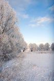Paisagem nevado Fotografia de Stock Royalty Free