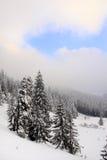 Paisagem nevado imagens de stock