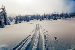 Paisagem nevado da montanha bonita e traços de esquiadores Fotos de Stock Royalty Free