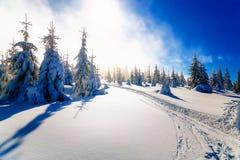 Paisagem nevado da montanha bonita e traços de esquiadores Fotografia de Stock