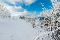 Paisagem nevado da montanha do inverno Imagens de Stock