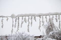 Paisagem nevando no parque Fotografia de Stock