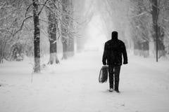 Paisagem nevando no parque com os povos que passam perto Foto de Stock