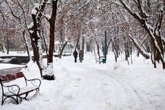 Paisagem nevando no parque com os povos que passam perto imagens de stock royalty free