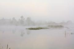 Paisagem nevoenta com um lago Imagens de Stock Royalty Free