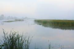 Paisagem nevoenta com um lago Imagens de Stock