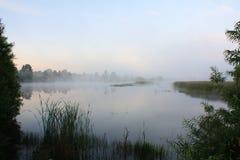 Paisagem nevoenta com um lago Imagem de Stock Royalty Free