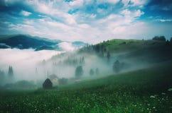 Paisagem nevoenta da manhã Foto de Stock Royalty Free