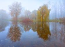 Paisagem nevoenta da manhã no parque do outono Fotografia de Stock