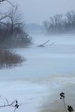 Paisagem nevoenta do inverno Fotos de Stock Royalty Free