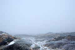 Paisagem nevoenta do inverno Imagem de Stock Royalty Free