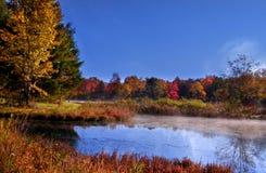 Paisagem nevoenta do outono imagens de stock royalty free