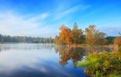 Paisagem nevoenta do outono bonito com as árvores que crescem no banco da lagoa pequena imagem de stock royalty free