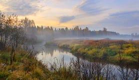 Paisagem nevoenta do outono com o rio pequeno da floresta fotos de stock