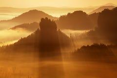 Paisagem nevoenta do outono ou do verão Manhã nevoenta enevoada com nascer do sol em um vale do parque boêmio de Suíça Detalhe de imagem de stock royalty free