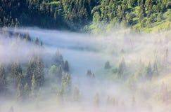 Paisagem nevoenta nas montanhas Foto de Stock Royalty Free