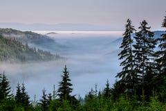 Paisagem nevoenta nas montanhas Foto de Stock