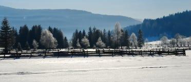 Paisagem no.2 do inverno Imagens de Stock Royalty Free