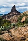 Paisagem no Arizona na floresta nacional de Tonto, EUA Imagem de Stock
