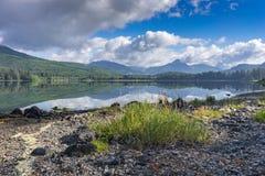Paisagem no Columbia Britânica do lago Nitinat, Canadá da manhã Imagem de Stock