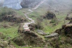 A paisagem no em torno de Darjeeling, Índia é verde e bonita É a parte cênico de Himalaya onde propriedades e garde do chá imagem de stock