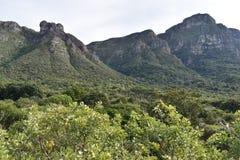 Paisagem no jardim botânico em Cape Town em África do Sul Imagem de Stock