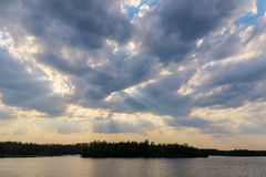Paisagem no lago da floresta Foto de Stock Royalty Free