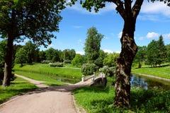 Paisagem no parque de Pavlovsk, Rússia Fotografia de Stock
