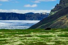 Paisagem no parque nacional de Skaftafell fotos de stock