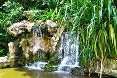Paisagem no parque Singapura dos pássaros de Jurong imagem de stock