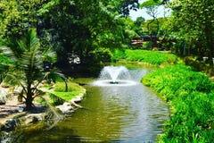 Paisagem no parque Singapura dos pássaros de Jurong imagem de stock royalty free