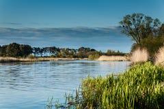 Paisagem no rio Nogat Fotografia de Stock Royalty Free