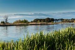 Paisagem no rio Nogat, Polônia Fotografia de Stock
