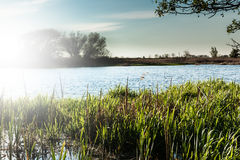 Paisagem no rio Nogat, Polônia Foto de Stock Royalty Free
