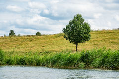 Paisagem no rio Peene perto de Loitz Foto de Stock