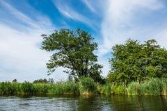 Paisagem no rio Peene perto de Loitz Imagem de Stock