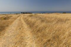 Paisagem no verão na ilha de Tabarca Foto de Stock