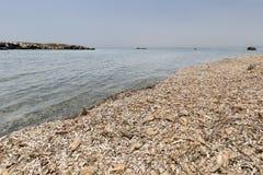 Paisagem no verão na ilha de Tabarca Fotografia de Stock Royalty Free