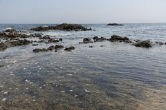 Paisagem no verão na ilha de Tabarca Fotos de Stock