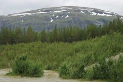 Paisagem norueguesa Imagem de Stock Royalty Free