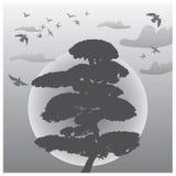 Paisagem oriental do por do sol - nuvens, pássaros e árvore ilustração stock