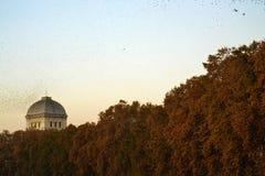 Paisagem outonal com céu do por do sol Fotografia de Stock Royalty Free