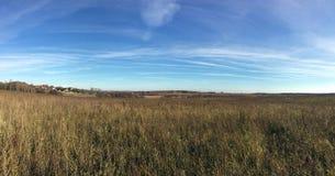 Paisagem panorâmico do campo com campo e floresta em distante sob o céu azul bonito com muitas nuvens brancas no outono dourado foto de stock royalty free