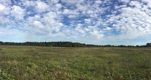 Paisagem panorâmico do campo com campo e floresta em distante sob o céu azul bonito com muitas nuvens do branco no verão fotografia de stock royalty free