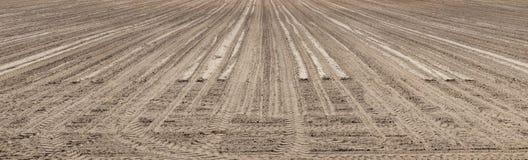 Paisagem panorâmico do campo vazio arado Foto de Stock Royalty Free