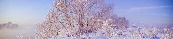 Paisagem panorâmico do inverno Fotos de Stock Royalty Free