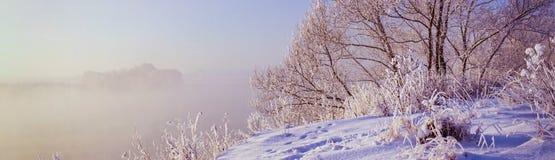 Paisagem panorâmico do inverno Fotografia de Stock Royalty Free